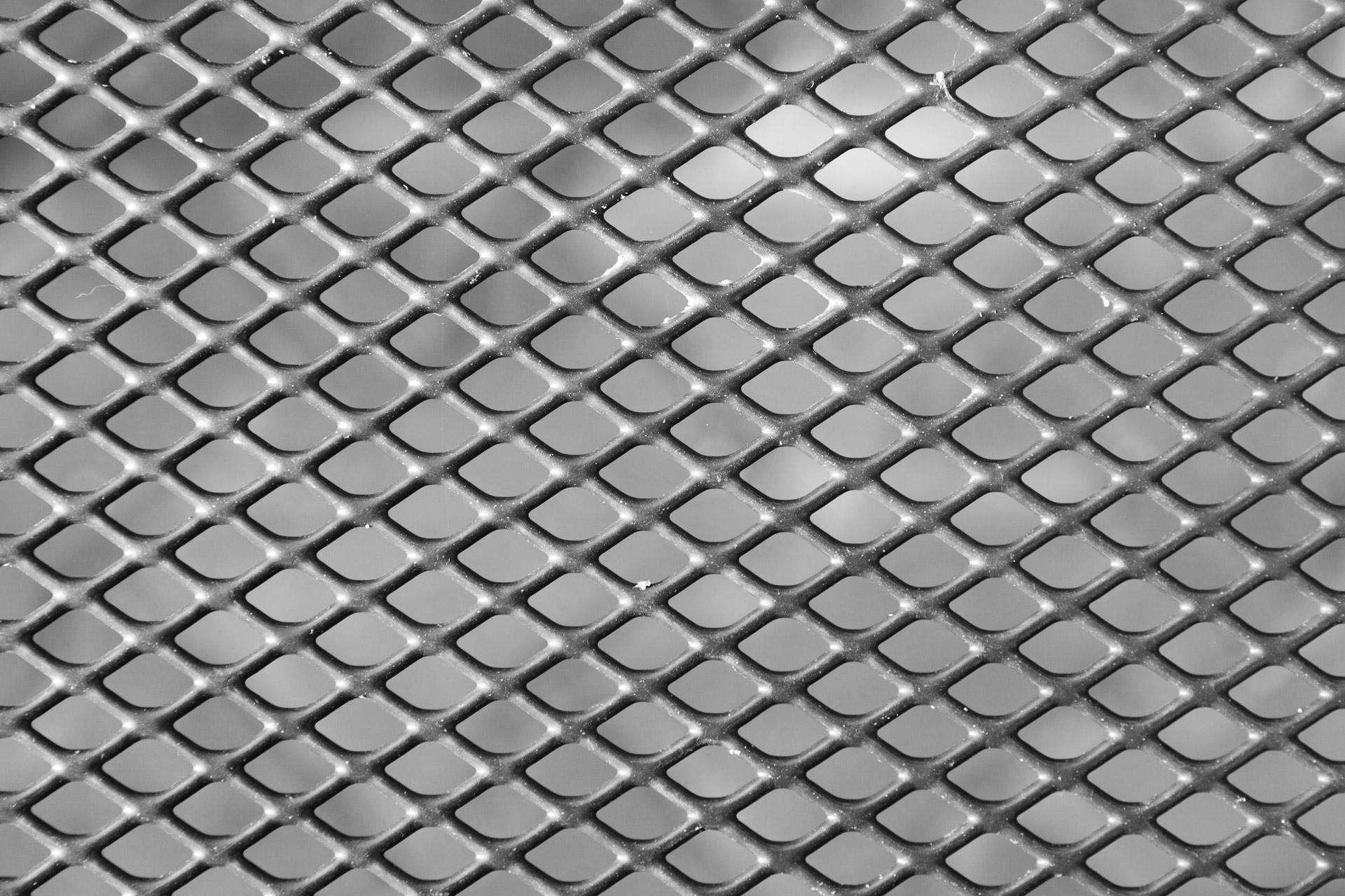 mesh_texture